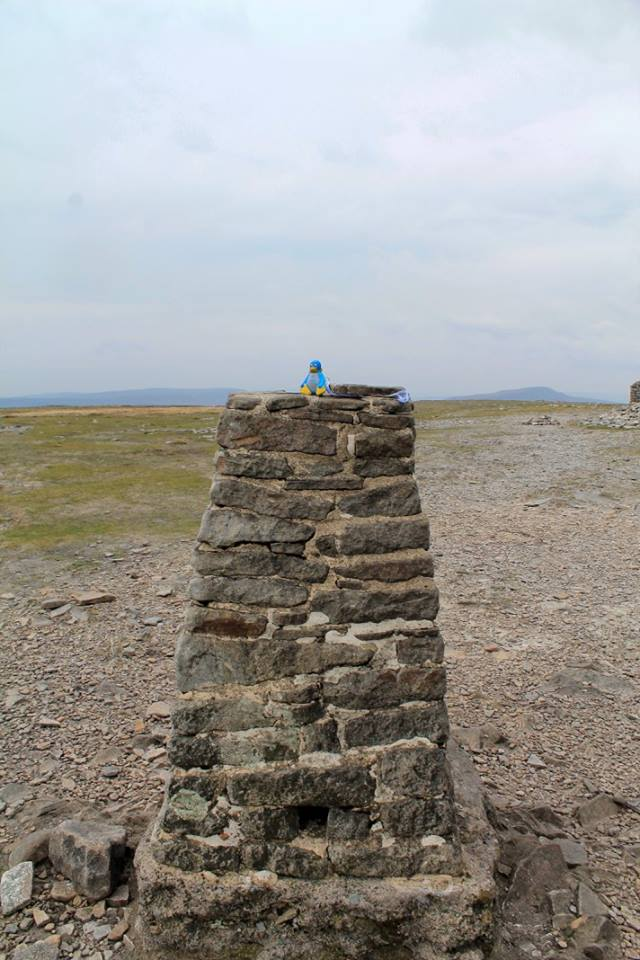 Ingleboroughtrigpoint